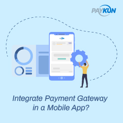 in app payment solutions